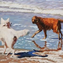 Beach dogs by Elena Sokolova
