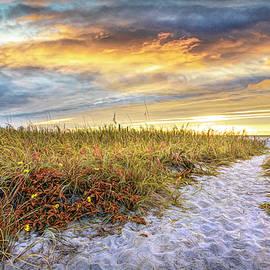 Beach Dune Autumn Wildflowers by Debra and Dave Vanderlaan