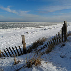 Beach on a Winter Morning by Dianne Cowen Photography