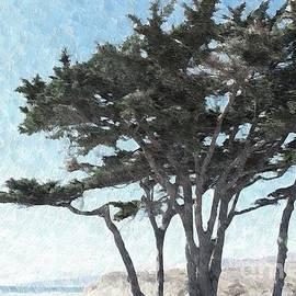 Beach Pine by Katherine Erickson