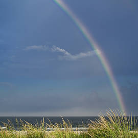Beach Rainbow by Steven Nelson