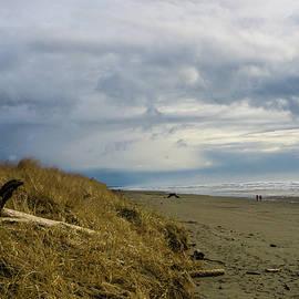 Beach Scene  by Peggy McCormick