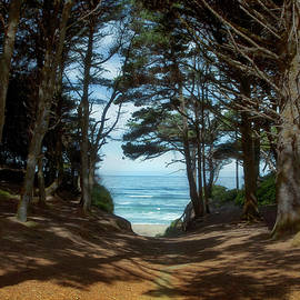 Beach Trail by Loyd Towe Photography