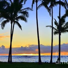 Beachwalk Sunrise In Kapaa Hawaii by Mary Deal