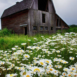 Beautiful Barns by Bob Christopher