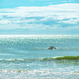 Beautiful Beach Day by Mary Ann Artz