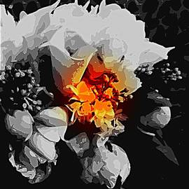 Beautiful-Bouquet-Selective-Color by VIVA Anderson