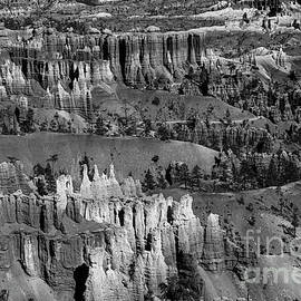Beautiful Bryce Canyon National Park Beautiful BW by Wayne Moran