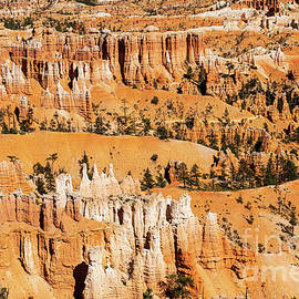 Beautiful Bryce Canyon National Park Beautiful by Wayne Moran