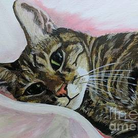 Beautiful cat in repose by Abbie Shores