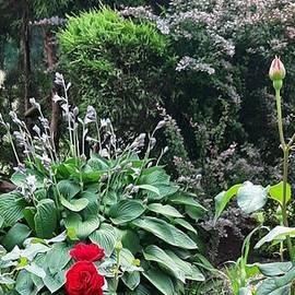 Beautiful Garden by Romuald  Henry Wasielewski