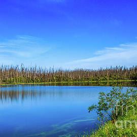 Beautiful Mountain Lake by Robert Bales
