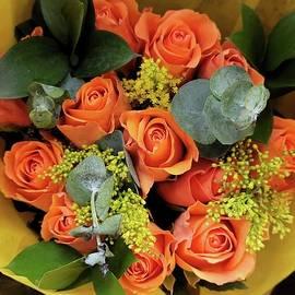 Beautiful Orange Roses by Charlotte Gray