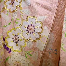 Beautiful pink silk maiko kimono Gion Kyoto Japan by Loren Dowding