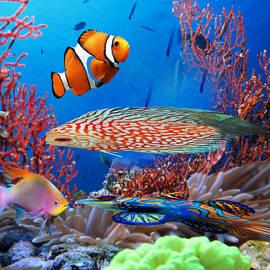 Beautiful Bottom of The Ocean by Belinda Threeths