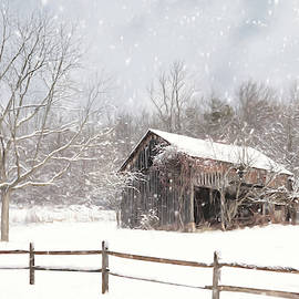 Beautiful Solitude by Lori Deiter
