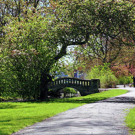 Beautiful Spring Day to Walk the Dogs by Susan Savad