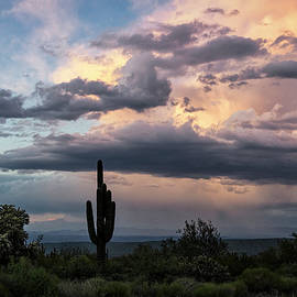 Beautiful Stormy Desert Skies  by Saija Lehtonen