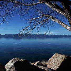 Beautiful View of Lake Tahoe by Ivete Basso Photography