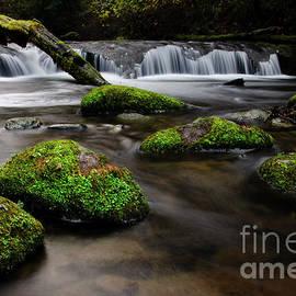 Beauty Of Sweet Creek  by Bob Christopher