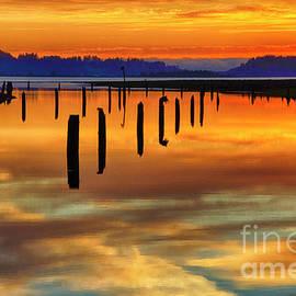 Beauty Of Washington State by Bob Christopher