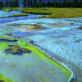 beauty of Yellowstone by Jeff Swan
