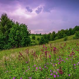 Before the storm by Igor Klyakhin