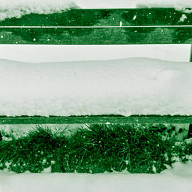 Bench for the Grinch by Davorka Gredicak
