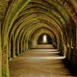 Beneath Fountains Abbey In North Yorkshire by Richard Jansen