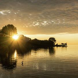 Beneath the Cloudbank Behind the Trees - Glorious Lakeside Sunrise by Georgia Mizuleva