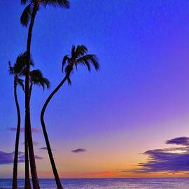Bent Palms at Sunset by Craig Wood