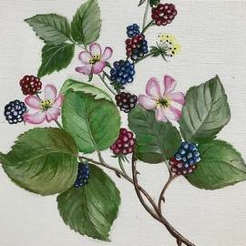 Berries and blossom painting  by Sushila Lakshmanan