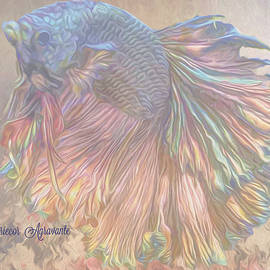 Betta Flamenco by Mariecor Agravante