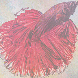Betta Tango by Mariecor Agravante