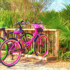 Bicycles In Florida by Mel Steinhauer