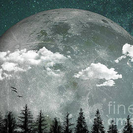 Big Moon Over Forest by Hal Halli