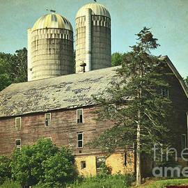 Big Ol' Wisconsin Barn by Ron Long