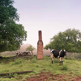Big Sandy Creek Dairy by Ryan Johnson