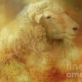 Big Wooly Sheep by Linda Cox