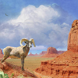 Bighorn At Monument Valley by R christopher Vest