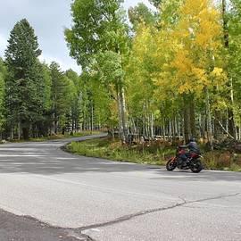 Biker Autumn
