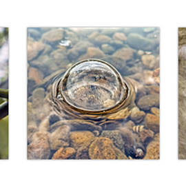 Water Triptych by Francis Sullivan