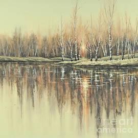 Birch Glow II by Paul Henderson