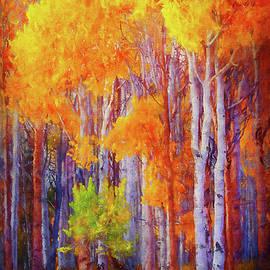 Birch Tree Beauty by Terry Davis