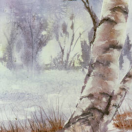 Vintage Watercolor, Birch Tree Original Watercolor Painting  by Catherine Ludwig Donleycott