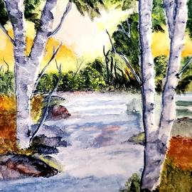 Birches Creek by Terry Feather