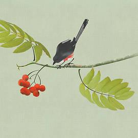 Bird in Rowan Tree by Spadecaller