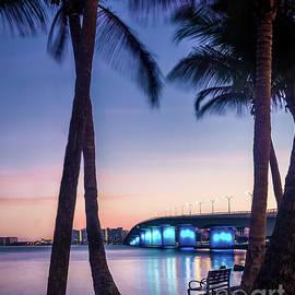 Bird Key, Florida at Sunrise 2 by Liesl Walsh
