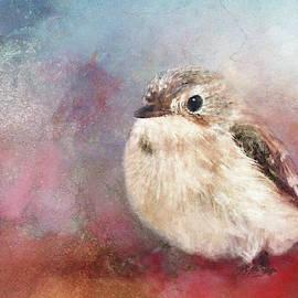 Bird on Red Texture by Terry Davis