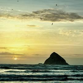 Birds At 3 Arch Rocks   by Beautiful Oregon
